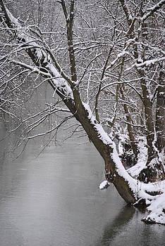 Jeffrey Randolph - Snowy River