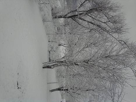 Snowy Road by Jeni Tharp