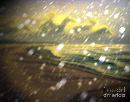 Algirdas Lukas - Snowy Seascape Vision 11 03 2015