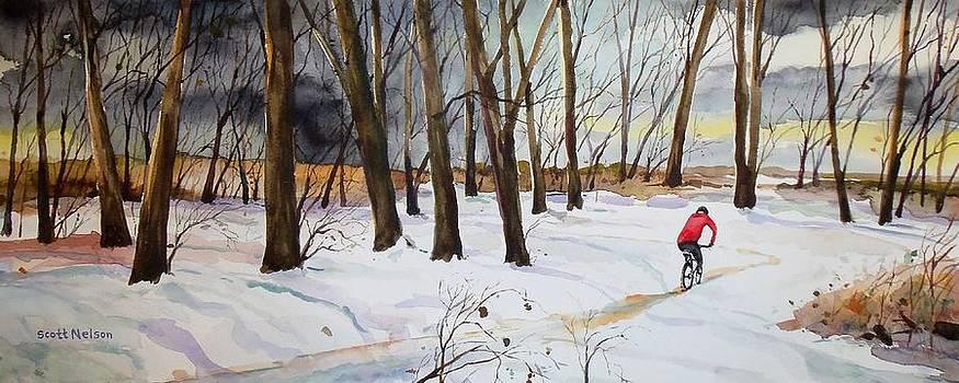 Snowy Single Track  by Scott Nelson