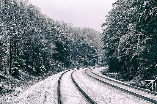 Snowy Travel by Michelle Ayn Potter