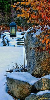 Snowy Welcome by Rick Lawler