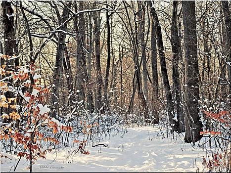 Snowy Woods by Mikki Cucuzzo