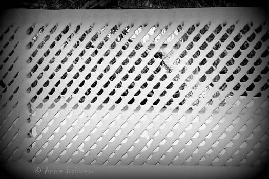 Snoy Stockade by Annie Babineau