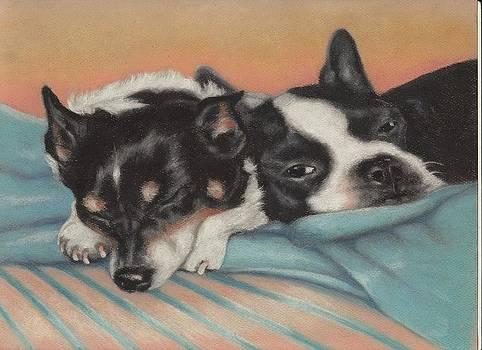 Snuggle Buddies by Pamela Humbargar