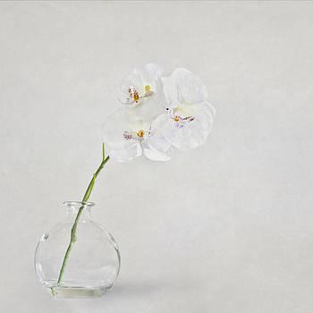 Evelina Kremsdorf - Soft As A Whisper