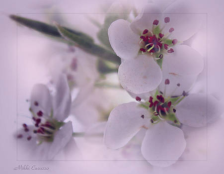 Soft blossoms by Mikki Cucuzzo