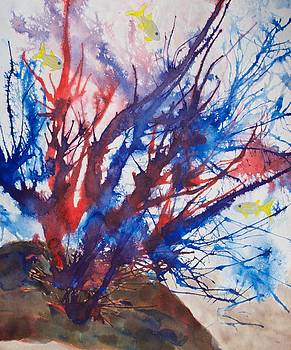 Patricia Beebe - Soft Coral Splatter