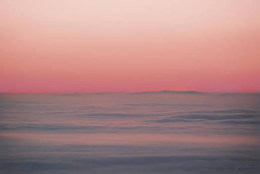 Julie Magers Soulen - Soft Fog