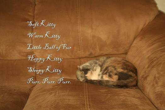 Soft Kitty by David S Reynolds
