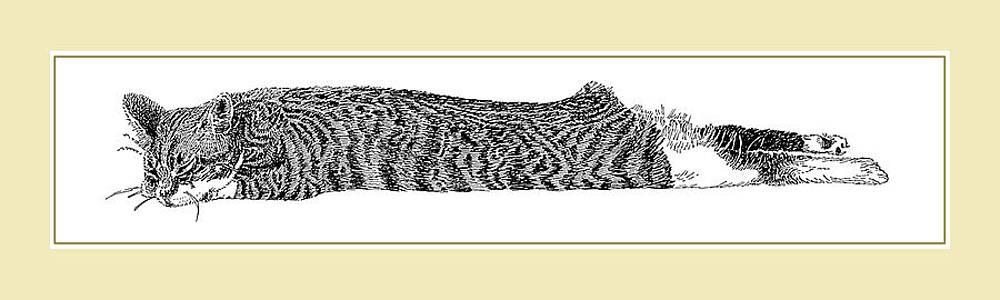 Jack Pumphrey - Soft Kitty Warm Kitty