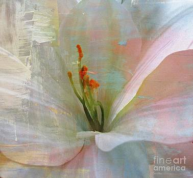 Soft Painted Lily by Judy Palkimas