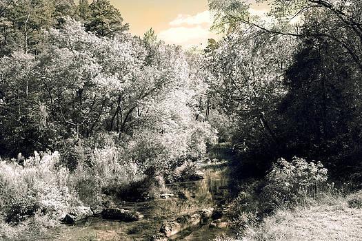 Nina Fosdick - Softly Flowing Waters
