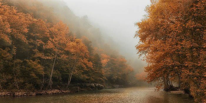 Softly Into Autumn  by Katie Abrams
