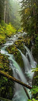 Sol Duc Falls by Burland McCormick