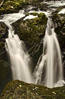 Heather Applegate - Sol Duc River Cascade