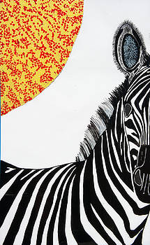 Solar White Zebra by Patrick OLeary