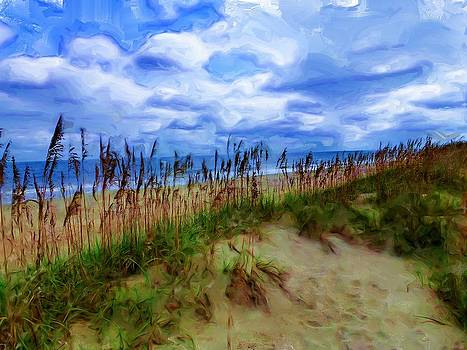 Solitary Beach by Cary Shapiro
