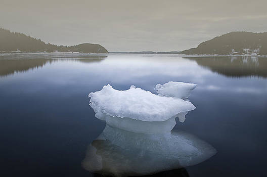 Solitary Ice Pan by Spencer Dove