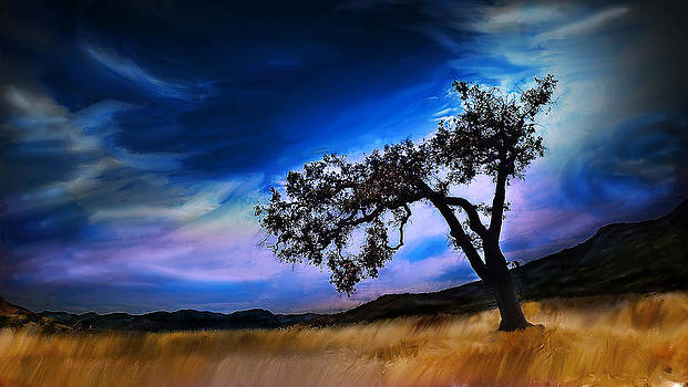 Solitary Tree by Cary Shapiro