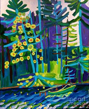 Solitude at Massapoag Lake by Debra Bretton Robinson