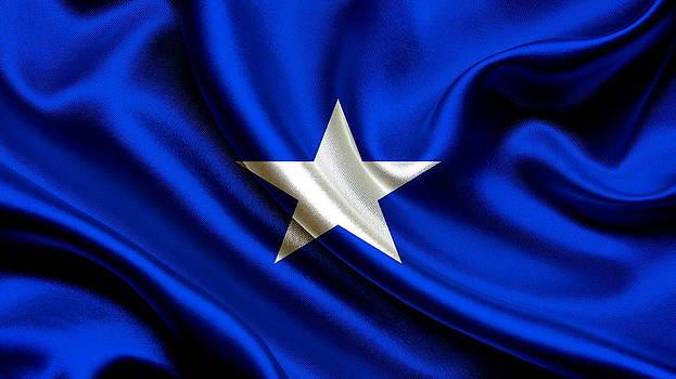 Valdecy RL - Somalia Flag