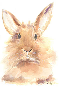 Some Bunny by Joyce Casey