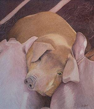 Some Pig by Kate ODell