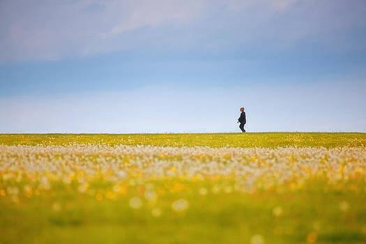 Sometimes We All Walk Alone by Karol Livote