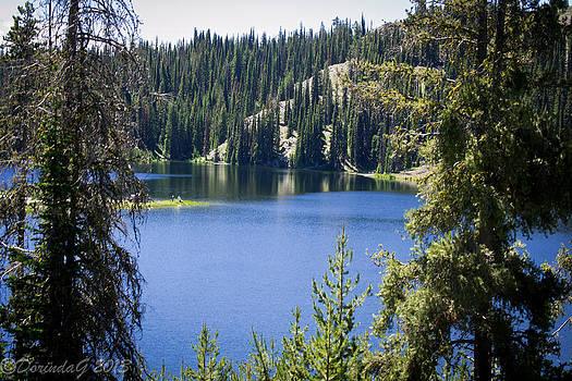 Somewhere Idaho by Dorinda Grever