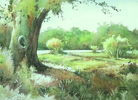 Somewhere in the country side by Sandeep Khedkar