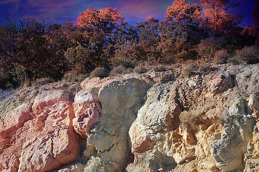 Gunter Nezhoda - Somewhere in the nevada desert