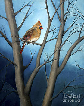Northern Female Cardinal by AWellsArtworks Fine Art