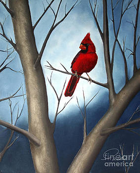 Northern Male Cardinal by AWellsArtworks Fine Art