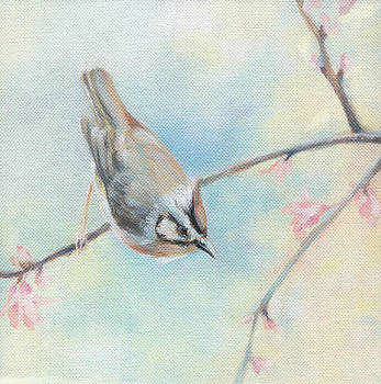 Natasha Denger - Songbird