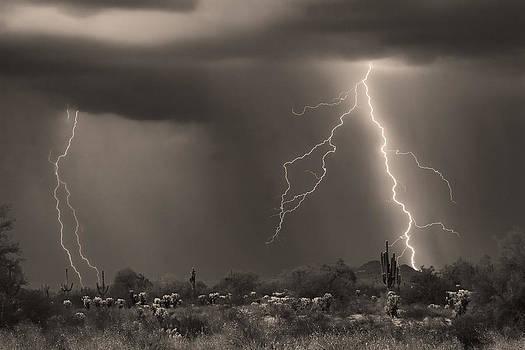 James BO  Insogna - Sonoran Desert Storm - Sepia