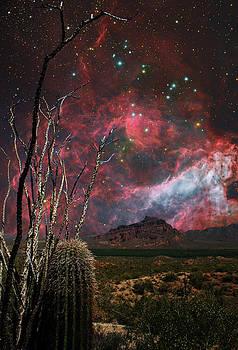 Sonoran Sci-Fi by Nick Kanihan