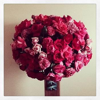 Sorpresa My Lovely ✨✨ #egonoo #love by Orlando Gonzalez