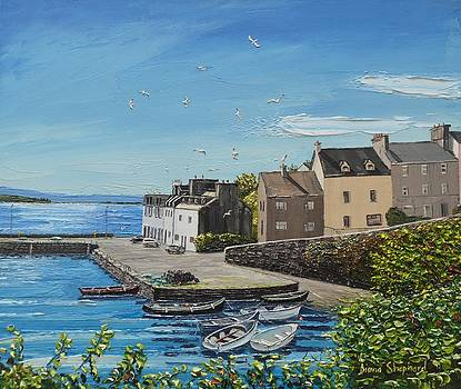 Sound of Seagulls Roundstone Connemara Ireland by Diana Shephard