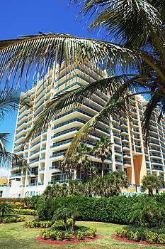 Ramunas Bruzas - South Beach Environment