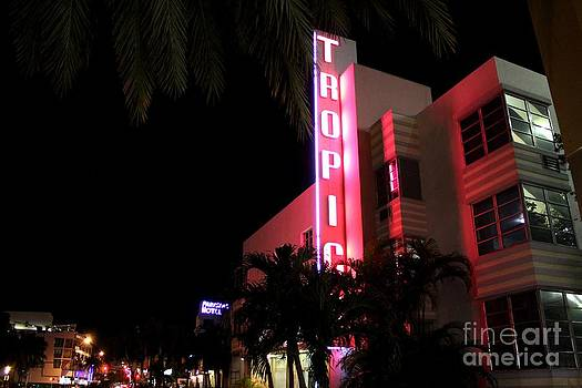 South Beach Neon by Theresa Willingham
