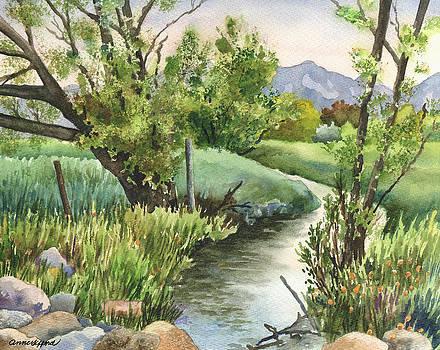 Anne Gifford - South Boulder Creek