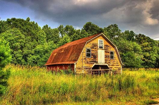 South Carolina Barn by Ed Roberts
