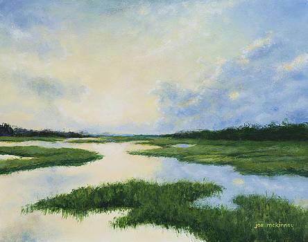 South Carolina Marsh by Joe Mckinney