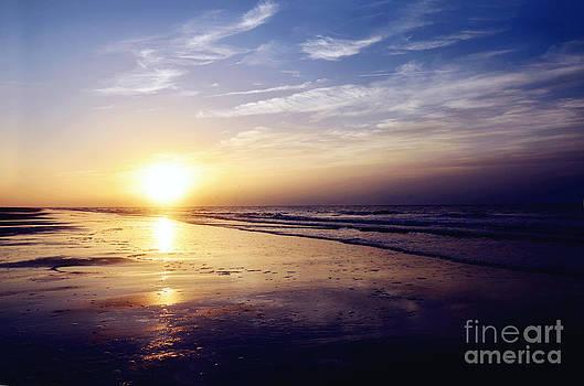 Rachel Barrett - South Carolina Sunrise