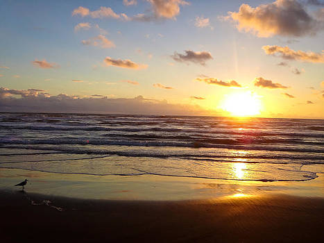 South Padre Island Sunrise by Norchel Maye Camacho