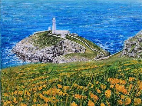 South Stack lighthouse Holyhead by Jenny A Jones