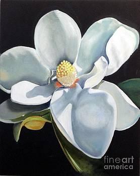 Southern Beauty 3 by Elaine Callahan