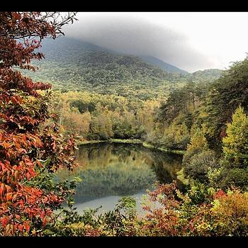 Southern Fall in the Mountains by Margaret Zimmer