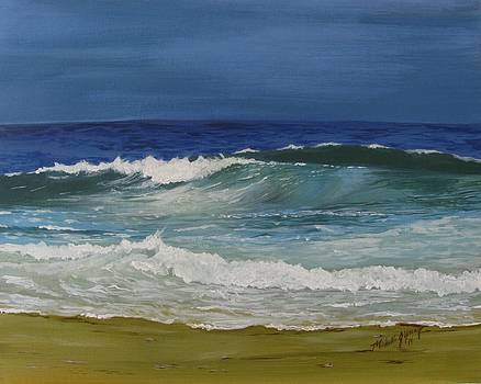 Southern Shores by Michelle Young